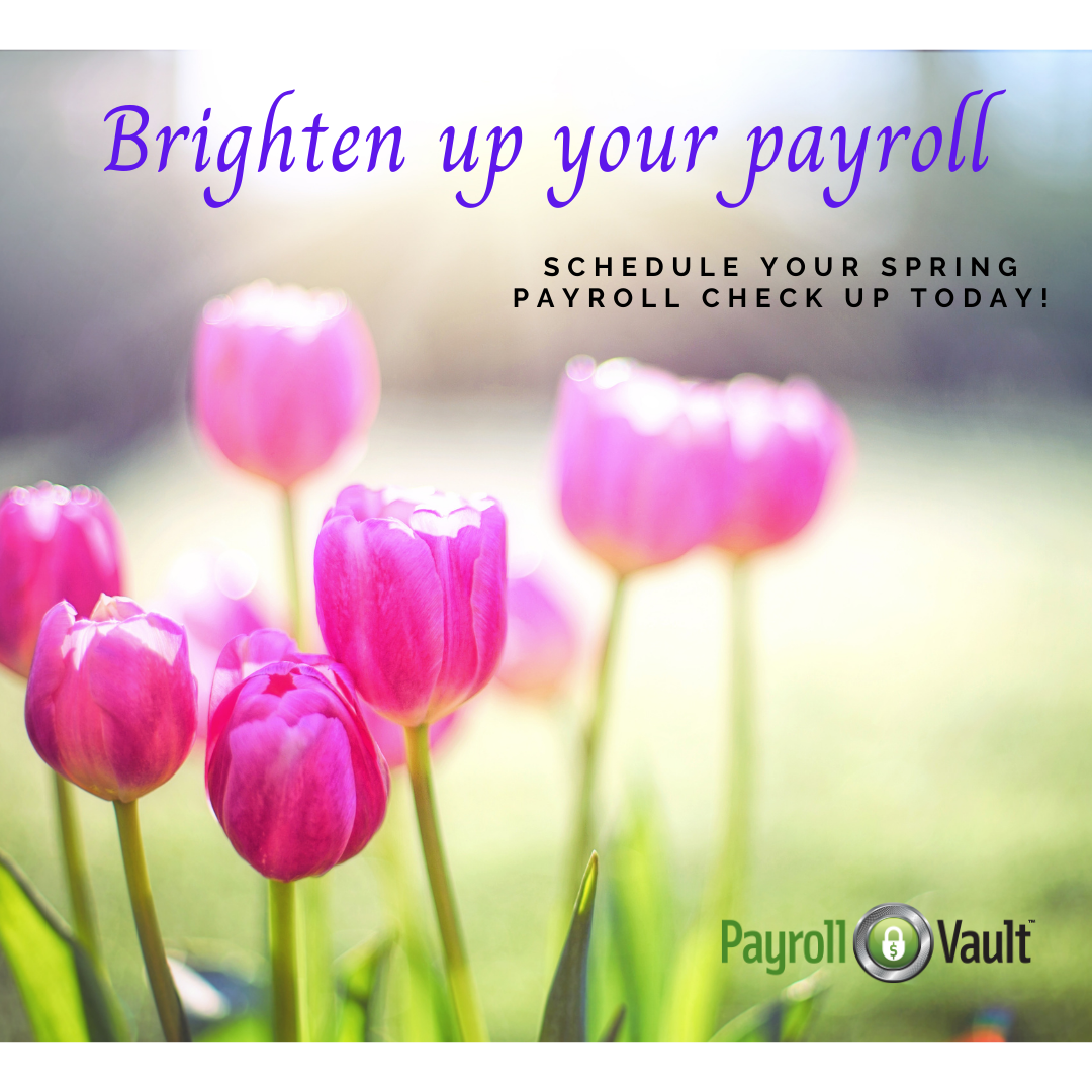 freshen-up-your-payroll